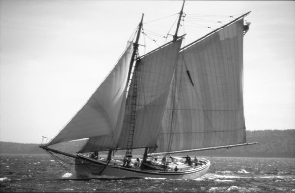 Schooner American Eagle - 1991 National Historic Landmark sailing the coast of Maine