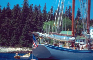 WoodenBoat Sail-In